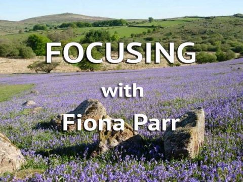 Focusing with Fiona Parr